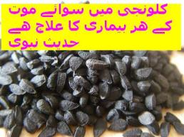kalonji-has-cure-of-all-diseases1